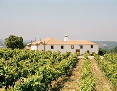 Quinta da Pellada Vinhos